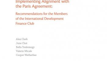 Implementing Alignment with the Paris Agreement: Recommendations for the Members of the International Development Finance Club