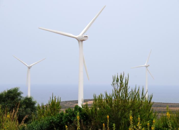 Wind turbine farm. Tunisia. Photo: Dana Smillie / World Bank