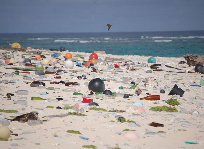 plage, débris, Hawaï, pollution, océans