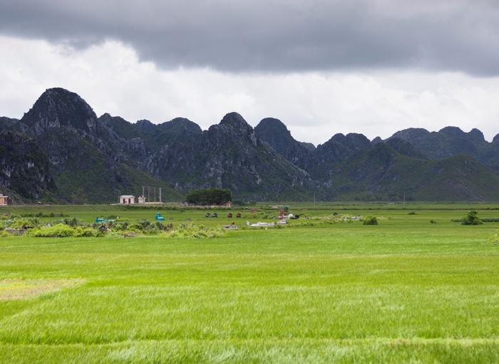 Vietnam, climate, adaptation