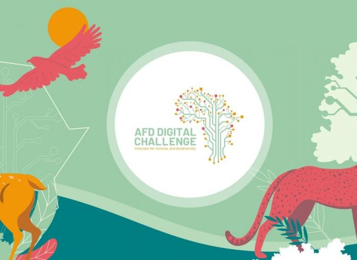 AFD Digital Challenge promotes and accelerates the development of African start-ups