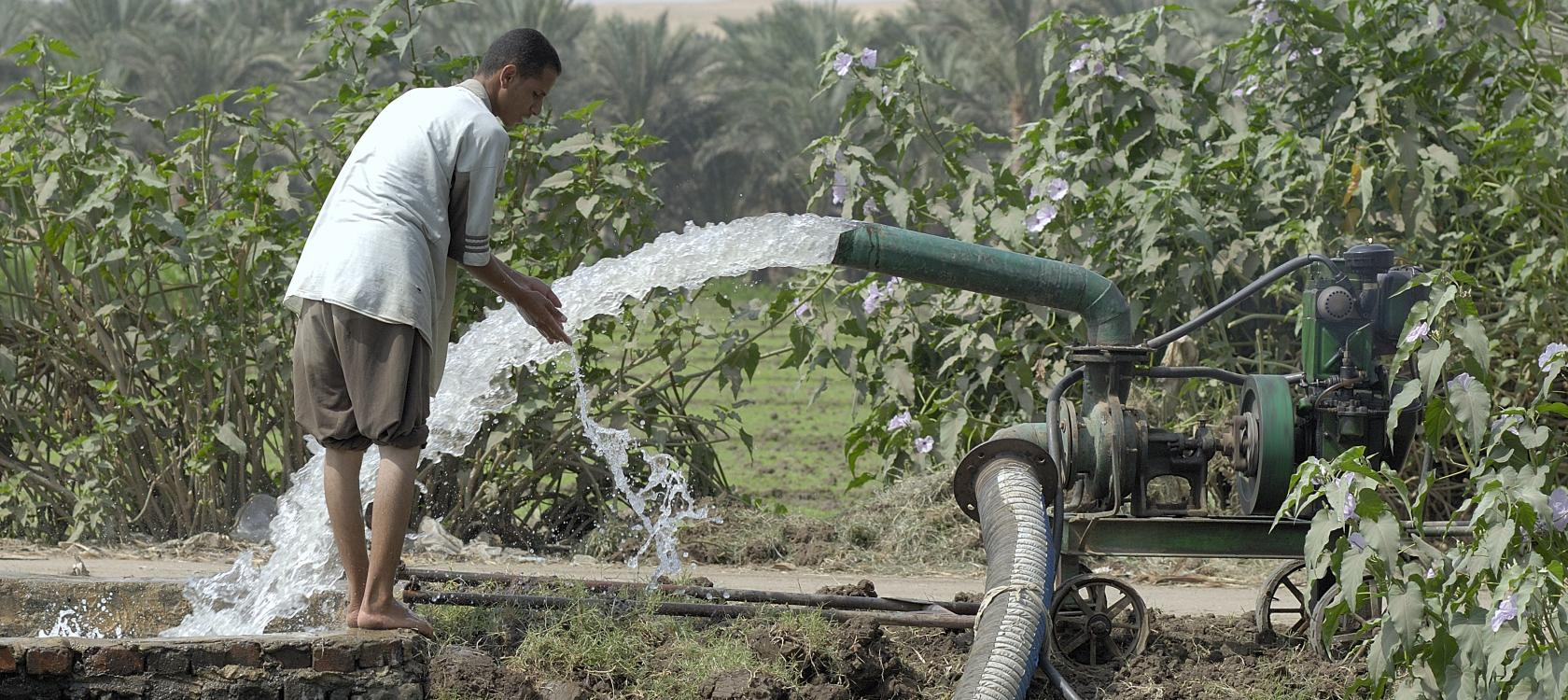 Irrigation, Egypt