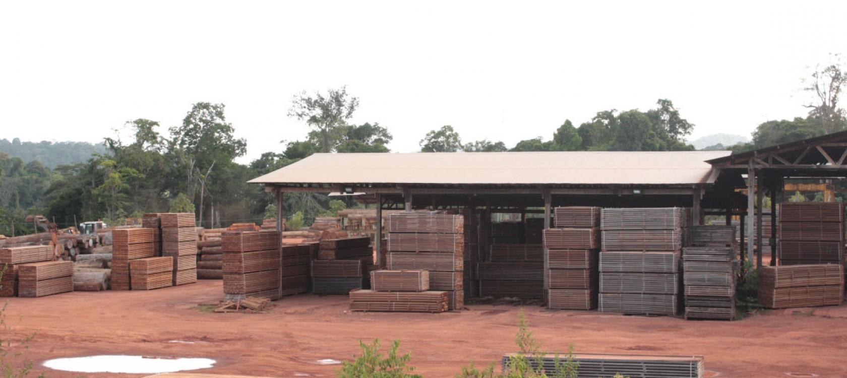 Cacao sawmill, biomass power station, Voltalia, French Guiana